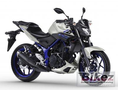 2017 Yamaha MT-25