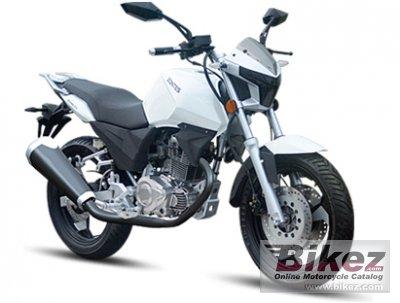 2014 Zontes ZT200-7A Phantom